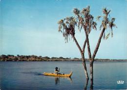 Afrique >  TCHAD Pirogue de papyrus  (arbre ( Editions: IRIS 5424)  *PRIX FIXE