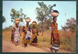 Cpsm Gf  -   Haute-volta Près De Banfora - Infatiguables Femmes Peulh Toujours Sur Les Chemins  - Tab10607 - Burkina Faso