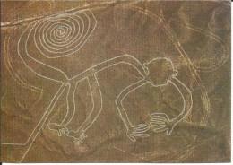 CPM PERU Nasca, un mono - geoglyphe,  singe - P�rou, site de Nazca - Monkey Geogliph