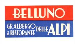 ETIQUETA DE HOTEL  - BELLUNO  -GR. ALBERGO & RISTORANTE DELLE ALPI