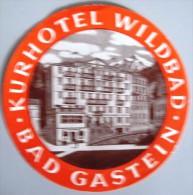 HOTEL PENSION WILDBAD BAD GASTEIN GERMANY DEUTSCHLAND TAG DECAL STICKER LUGGAGE LABEL ETIQUETTE AUFKLEBER BERLIN