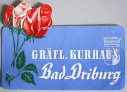 HOTEL PENSION GRAFLICHES BAD DRIBURG GERMANY DEUTSCHLAND TAG DECAL STICKER LUGGAGE LABEL ETIQUETTE AUFKLEBER BERLIN