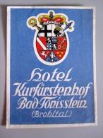 HOTEL PENSION KURFURSTENHOF BAD TORISSTEIN GERMANY DEUTSCHLAND DECAL STICKER LUGGAGE LABEL ETIQUETTE AUFKLEBER BERLIN
