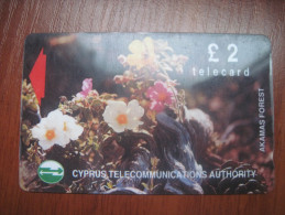 Cyprus. Flowers. Akamas Forest.. Magnetic Card. - Flowers