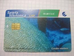 Cuba. Sea Corals. 2007. ETESCA Chip Phonecrad. - Phonecards