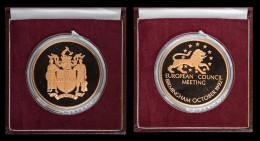 M01813 EUROPEAN COUNCIL Meeting In BIRMINGHAM 1992 - LION - ETOILES  (44 G)  BLASON - FORWARD Au Revers - Professionnels/De Société