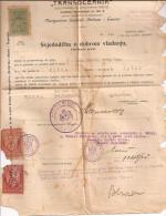 15 HISTORICAL PERSONAL DOCUMENTS LUKA BONACIC DORIC TOME CROACIA 1904/1949 ORIGINAL 100% RARISSIME VOIR PHOTOS! GECKO - Historical Documents