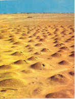 Asie - Bahrein - Ancient Tombs - Bahreïn