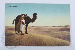 Old Postcard Sahara - Desert And Man With Camel - Sahara Occidental