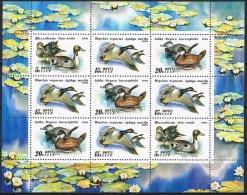 K677 FAUNA VOGELS BIRDS OISEAUX VÖGEL AVES EEND DUCK ENTE RUSSIA CCCP 1991 PF/MNH - Oiseaux