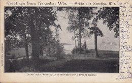 United States PPC Greetings From Kenosha Wis, - Grüsse Aus Kenosha Jacobs Island KENOSHA 1906 (2 Scans) - Kenosha