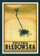 POLAND  -  Pustynia Bledowska  Ryszard Kaja  Used As Scans - Paintings