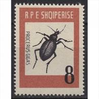 Albanien 737 Postfrisch Insekten Riesen-Laubkäfer - Albanie