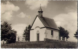 St. Gertrudiskapelle - Hohenluftkurort Oberreifenberg - Ts - Formato Piccolo Viaggiata - Germania