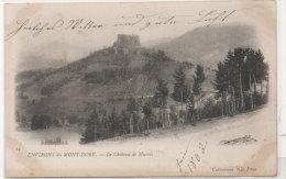 Environs Du Mont Dore - Le Chateau De MUROLS  (73606) - Frankrijk