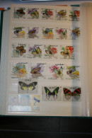 "Lot De 24 Timbres Superbe état Thèmes ""Papillon"", Shqipeia, Liberia, Fujeira - Papillons"
