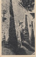 8123- BRATISLAVA- CASTLE RUINS - Slovakia