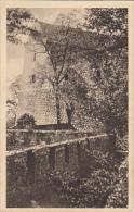 8124- BRATISLAVA- CASTLE RUINS - Slovakia
