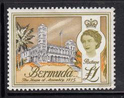 Bermuda MNH Scott #191 1pd House Of Assembly - Lower Left Corner Has No Gum - Bermudes