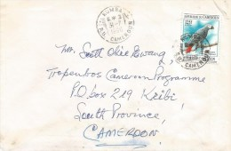 Cameroon Cameroun 1996 Kumba Grey Parrot Bird Domestic Cover - Kameroen (1960-...)