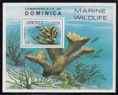 Dominica MNH Scott #624 Souvenir Sheet $3 Elkhorn Coral - Dominique (1978-...)