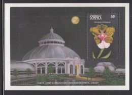 Dominica MNH Scott #1194 Souvenir Sheet $5 Oncidium Lanceanum - Orchids - Dominique (1978-...)