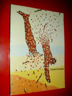 Gérard Fromanger   Catalogue 1983 Siena   Tableaux Peintures - Livres, BD, Revues