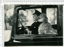 Knightsbridge  -  London  -        Chauffeur Et  Le  Caniche  Dans Une Voiture  - D Après Photo  Thurston Hopkins  1953 - Hunde