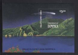 Dominica MNH Scott #988 Souvenir Sheet $5 Halley's Comet Over Dominica With Silver Overprint - Dominique (1978-...)