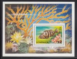 Dominica MNH Scott #426a Souvenir Sheet $2 Grouper - Dominique (1978-...)