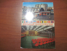 Italy. Lombardia. Cinisello. Palazetto Dello Sport., Mint.. Villa Monza Ed. - Cinisello Balsamo