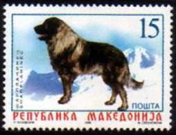 Macedonia 1999 Fauna, Dogs, Sheepdog, MNH - Macédoine