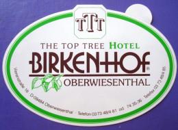 HOTEL PENSION BAYERN BIRKENHOF OBERWIESENTHAL GERMANY DEUTSCHLAND TAG STICKER LUGGAGE LABEL ETIQUETTE AUFKLEBER BERLIN - Hotel Labels