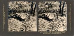Steglitz, Wassenaar, Triel, No. 53 - Stereoskope - Stereobetrachter