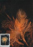 D18663 CARTE MAXIMUM CARD 1980 MONACO - SPIROGRAPHIS CP ORIGINAL - Maritiem Leven