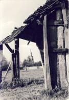 Hallaar (kerk Op Achtergrond) - Heist-op-den-Berg