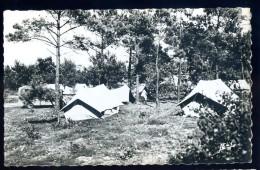 Cpsm Du 85  Environs De St Martin De Brem Commune D' Olonne Camping Dans La Forêt Tourisme Et Travail   HIV14 - Sables D'Olonne