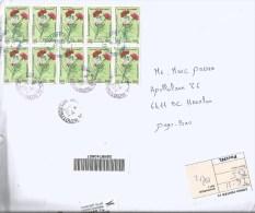 Tunisia Tunisie 2014 Borjlouzir Carnation Dianthus Flower Barcoded Registered Cover - Tunesië (1956-...)
