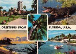 013P/ Greetings From Florida - Etats-Unis