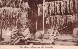"""ROCHEHAUT - FRAHAN-sur-SEMOIS - Amateurs De Semois, Pour Un """"Tabac Pur Et De Qualité """" Plantations F. Didot & Fils - Bouillon"""