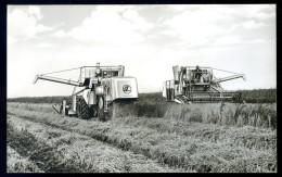 Cpsm Claas Matador  -- Moissonneuse Batteuse Blé      HIV16 - Tracteurs