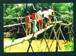 VIETNAM  -  Monkey Bridge  Mekong Delta  Used Postcard As Scans - Vietnam