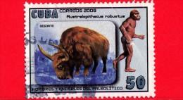 CUBA - USATO - 2008 - Uomini E Animali Del Paleolitico - Australopithacus Robustus - Bisonte - 50 - Cuba