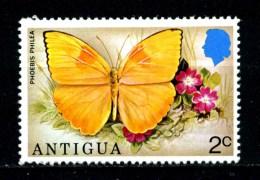 ANTIGUA - Farfalle - Butterfly -  Nuovo - News -MNH **. - Butterflies