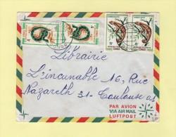 Mindouli - Congo - Reptiles - Cameleon - Serpent - 1971 - Congo - Brazzaville