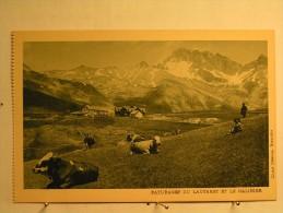 Paturage Du Lautaret Et Le Galibier - Vaches - Francia