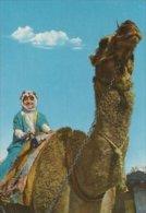 Saudi Arabia.  -  A Ride On The Camel.  Sent To Germany.  # 01712 - Saudi Arabia