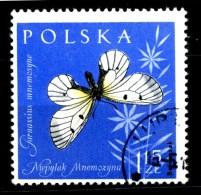 POLONIA - POLSKA - Farfalle - Butterfly - Usato -used . - Schmetterlinge
