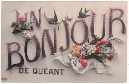 UN  BONJOUR  DE  QUEANT - France