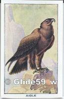 Chromo - Les Oiseaux - Aigle - Bon Point - Anémie - Sirop Deschiens - N° 27 - Trade Cards
